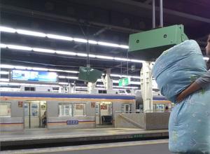 鉄道 電車 布団乾燥 寝具乾燥 熱乾燥 ダニ トコジラミ 南京虫